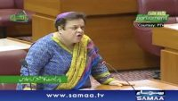 Shireen Mazari asks UN to form inquiry commission on India's violations in Kashmir