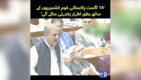 Shah Mahmood Qureshi's big announcement about Independence Day