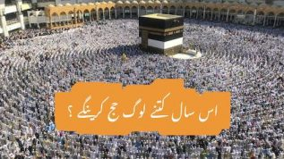 Hajj 2019 – everything you need to know
