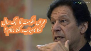 Imran's government one year: Failure or success?
