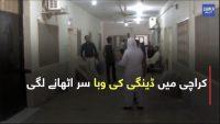 Karachi mein dengue ke cases mein izafa