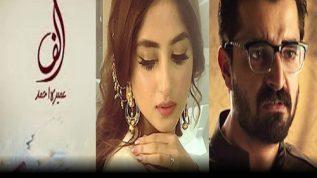 Get ready for Hamza Ali Abbasi and Sajjal Ali