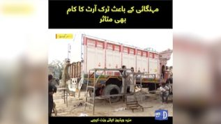 Mehangai kay baais truck art ka kam bhi mutasir