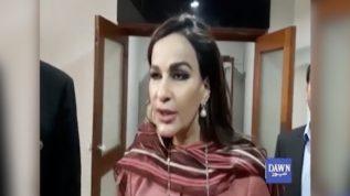 Hakumat siyasi mukhalfeen ko inteqam ka nishana ban rahi ha,Sherry Rehman
