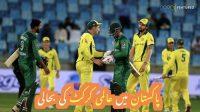 Pakistan main almi cricket ki bahali