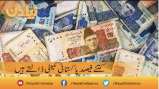 Kitne Feesad Pakistani committee daalte hain
