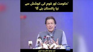 Hukumat aur Qoum ki koshish say Naya Pakistan Banay ga, Imran Khan