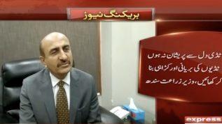 Karachi mein Tiddi ka hamla: Wazeer e Zaraat Sindh Ismail Rahoo ka anokha bayan