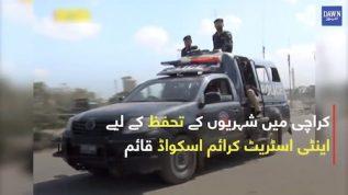 Karachi mein sher'oun kay tahaffuz kay liye anti street crime squad qayam