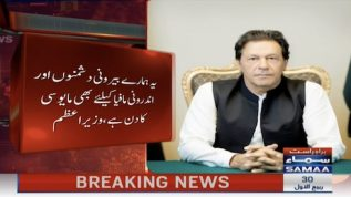 PM Khan reacts to SC verdict on Gen Bajwa extension