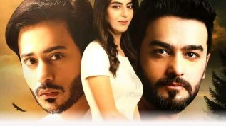 """Pakistani movie """"Talash"""" special screening in United Nations"""