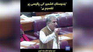 Kasmir ki policy per hindustan taqseem ha, Shah Mehmood Qureshi