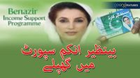 Benazir Income Support Program main ghaplay