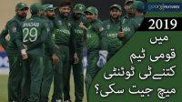 2019 mein qaumi cricket team kitnay T20 match jeet saki?