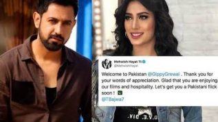 """Mehwish Hayat & Gippy Grewal in a film """"Let's Get You A Pakistani Flick"""" wrote the actress"""