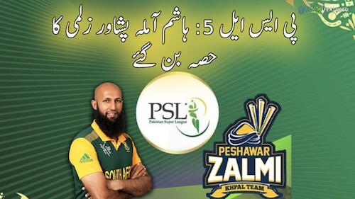 PSL:5 Hashim amla Peshawar Zalmi ka hissa ban gaye