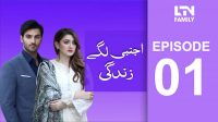 LTN Family | Ajnabi Lage Zindagi | Episode 01