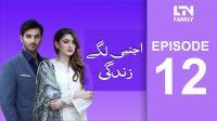 LTN Family | Ajnabi Lage Zindagi | Episode 12