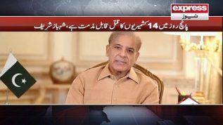 5 roz mein 14 Kashmirion ka qatal qabl-e-muzammat hai: Shehbaz Sharif