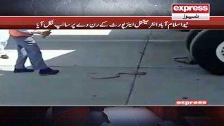New Islamabad airport kay runway per saanp nikal aaya